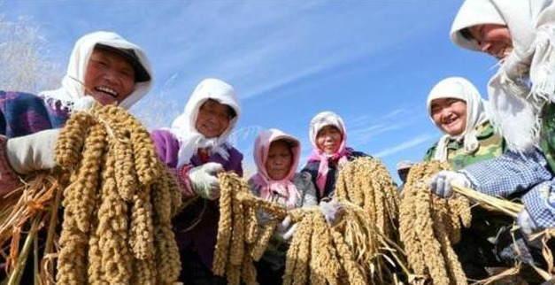 首个中国农民丰收节到来 将开展系列节庆活动 今年的9月23日对于中国农民是个重要的日子,他们将迎来第一个专属节日中国农民丰收节。 今年6月,国务院公布了关于同意设立中国农民丰收节的批复。2018年起,将每年农历秋分设立为中国农民丰收节。 近期,中国农业农村部表示,各部门正加紧筹备一系列节庆活动,届时节日活动将持续约半个月。
