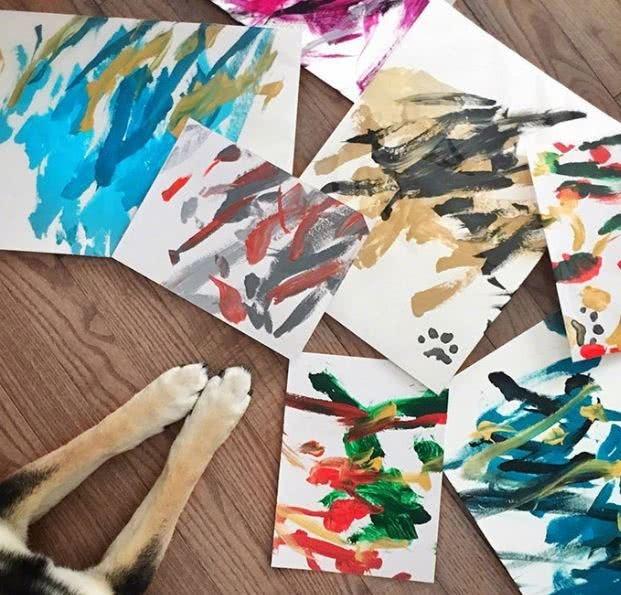 优秀 狗狗叼笔作画 还有专属签名