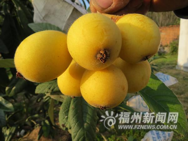 http://www.fanchuhou.com/lvyou/909972.html