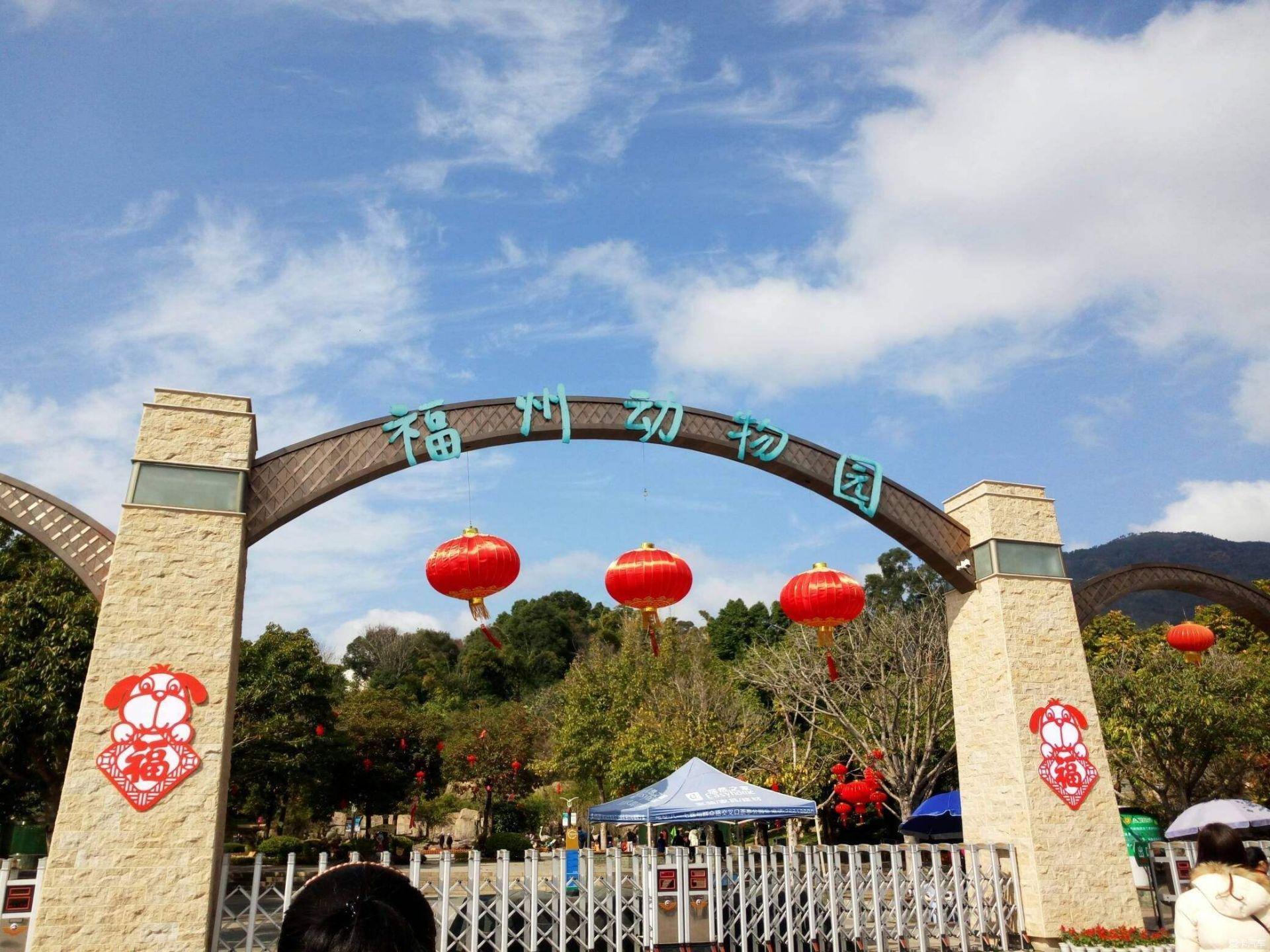 即日起!福州动物园恢复开园!